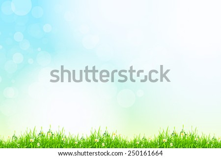 Fresh green grass with blue bokeh and sunlight and flowers. Beauty natural background - stock vector