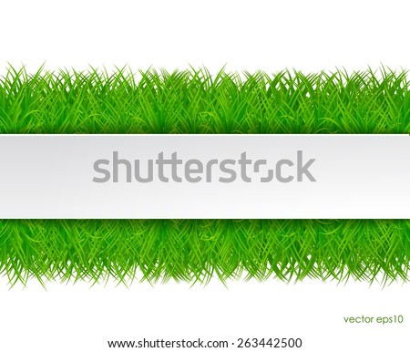Fresh green grass with white sticker. vector eps10. - stock vector