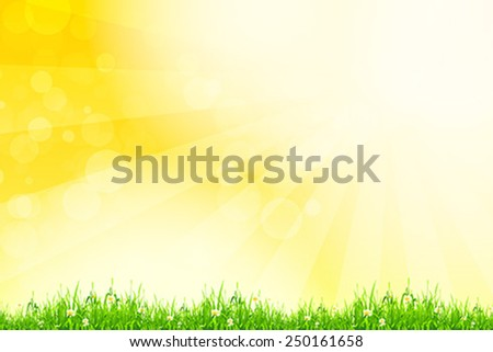 Fresh green grass with yellow bokeh and sunlight and flowers. Beauty natural background - stock vector