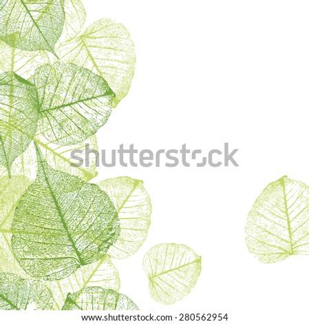 Fresh green leaves background - vector illustration - stock vector