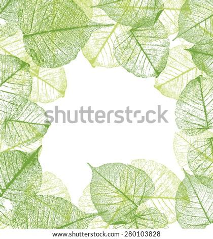 Fresh green leaves frame- vector illustration - stock vector