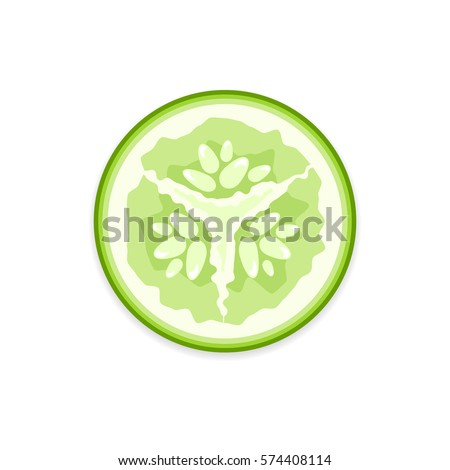 Fresh green vector cucumber slice on white background