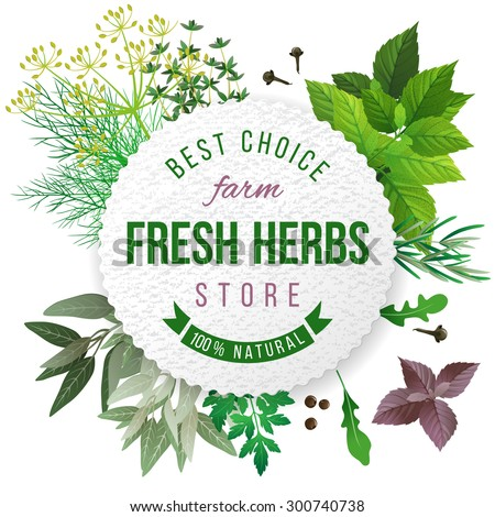 Fresh herbs store emblem - easy to use in your own design - stock vector