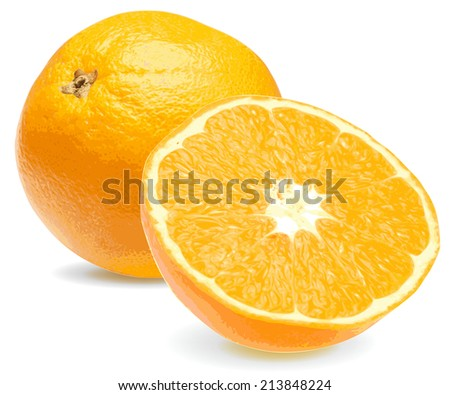 Fresh juicy orange close up on a white background - stock vector