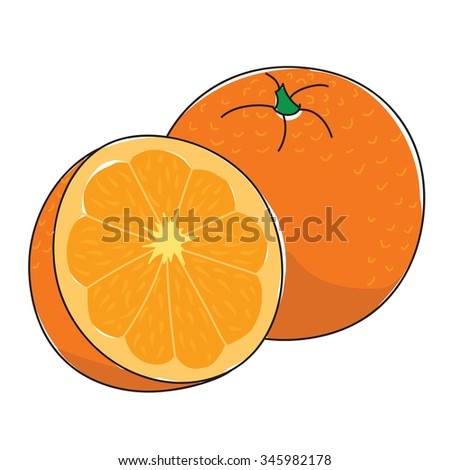 Fresh juicy orange on a white background - stock vector