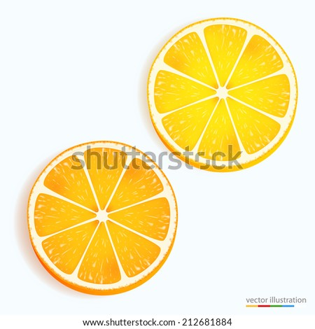 Fresh lemon and orange slice icon on a white. Vector illustration - stock vector