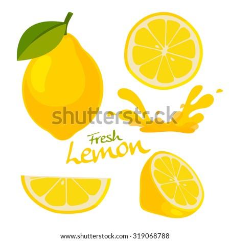 fresh lemon vector - stock vector