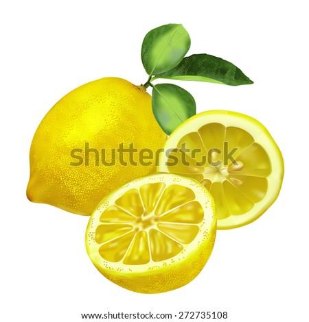 Fresh lemon with leaves, lemon slice and part isolated on white background. Vector illustration - stock vector