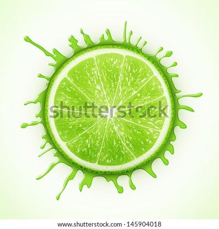 fresh lime with splash eps10 vector illustration - stock vector