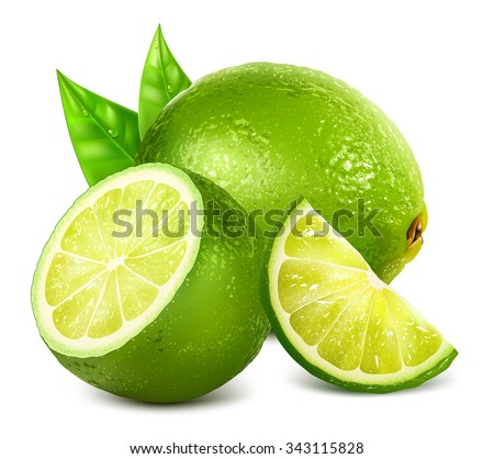 Fresh limes and lime slice with leaves. Vector illustration - stock vector