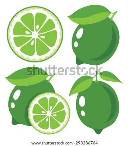 Fresh limes, collection of vector illustrations - stock vector