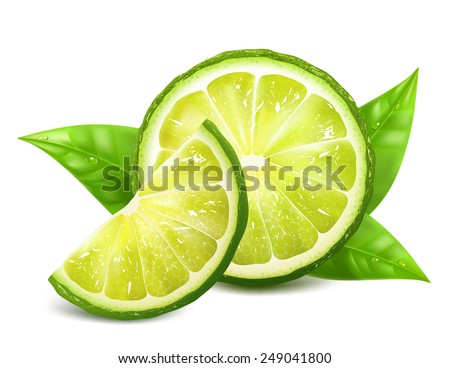 Fresh limes with leaves. Vector illustration - stock vector
