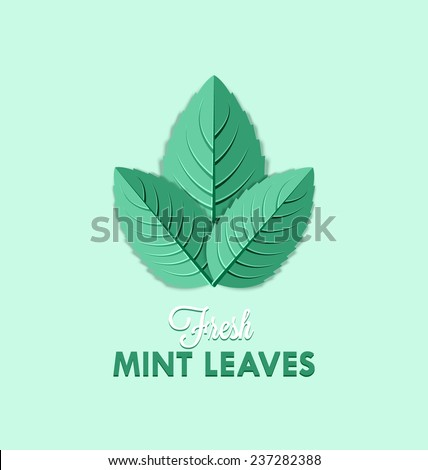 Fresh mint leaves isolated on pale green background - stock vector