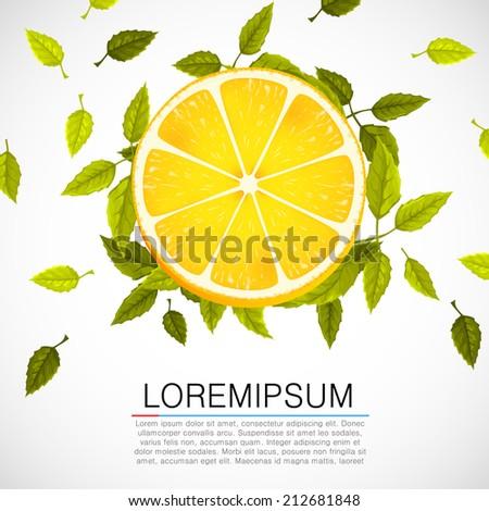 Fresh orange slice with leafs. Vector illustration - stock vector