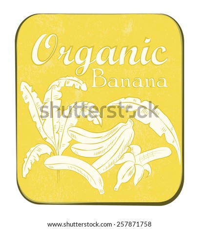 Fresh Organic Banana Label. Vector illustration. Retro fruit design. Vector old paper texture background.  - stock vector