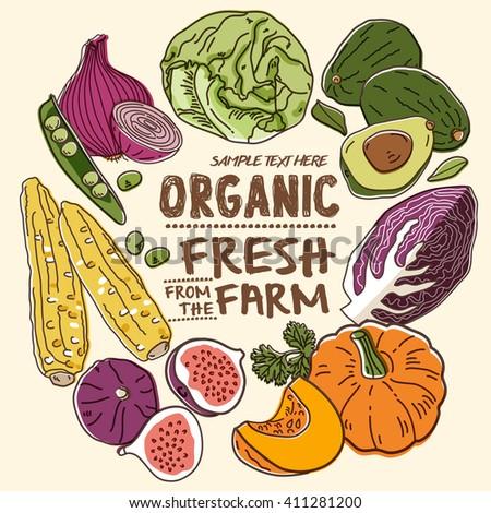 Fresh organic farm vegetables_Vol. 2 - stock vector