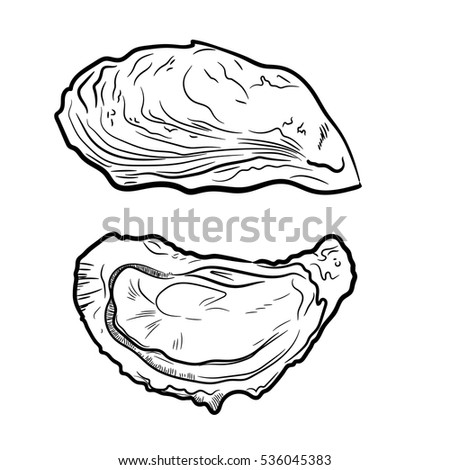 Oyster knife drawing