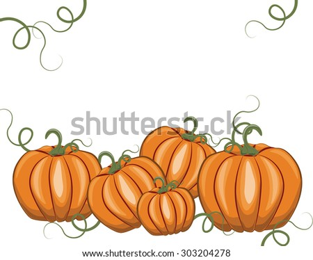 Fresh Pumpkins on white background. Vector - stock vector