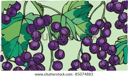 Fresh ripe blackcurrants - stock vector