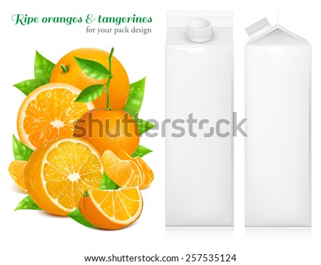 Fresh ripe oranges and tangerines with green leaves. Juice white carton package. Vector illustration - stock vector