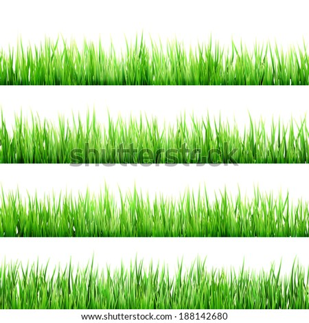 Fresh spring green grass isolated on white background. And also includes EPS 10 vector - stock vector