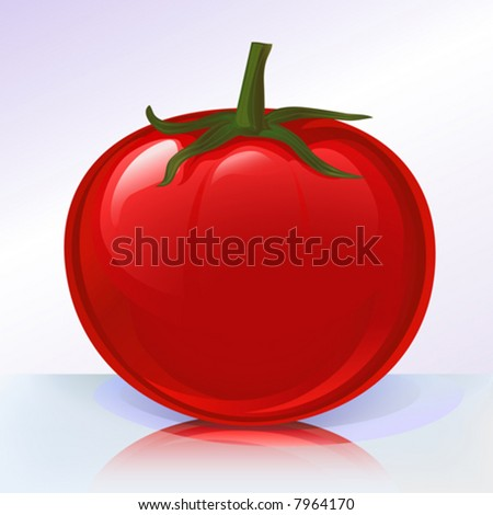 Fresh tomato on reflecting surface (other fruits & vegetables are in my gallery)