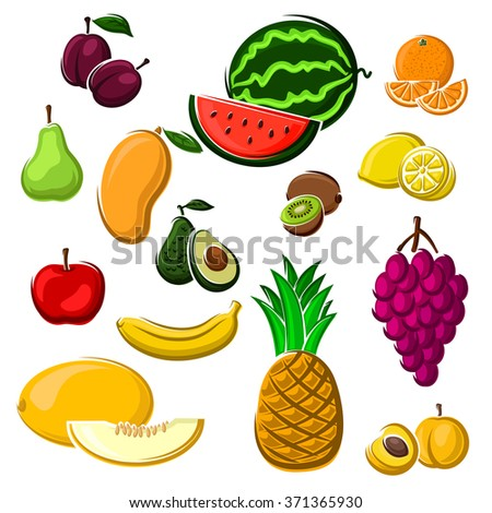 Fresh tropical orange, apple, mango, plum, banana, grape, pear,  lemon and peach, kiwi and avocado, pineapple, watermelon and melon fruits. Agriculture harvest or dessert food recipe design usage - stock vector