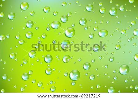 fresh vector water drops - stock vector
