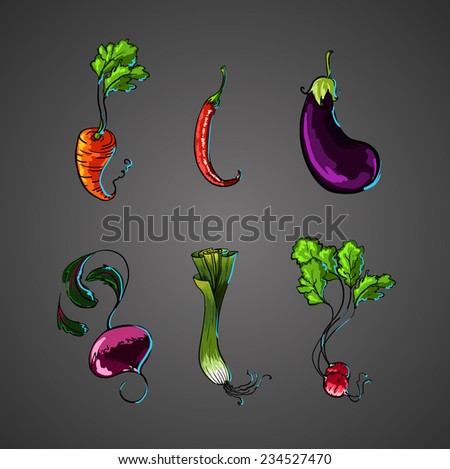 fresh vegetables  Chili Pepper green leek  Eggplant beet  - stock vector