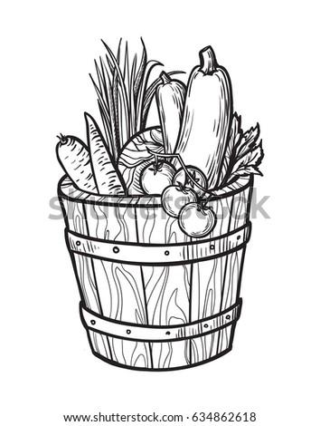 Vegetable Basket Sketch Loris Decoration