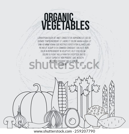 Fresh vegetables vector concept. Healthy diet flat style illustration. Isolated green food, can be used in restaurant menu, cooking books and organic farm labels.   - stock vector