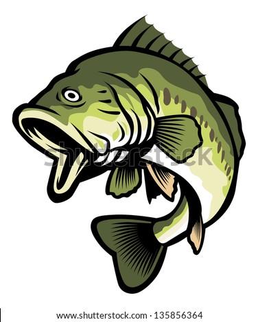 freshwater fish - stock vector
