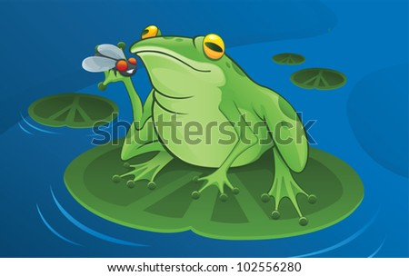 Frog and Fly - vector - stock vector