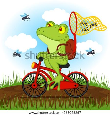 how to catch flies for frogs