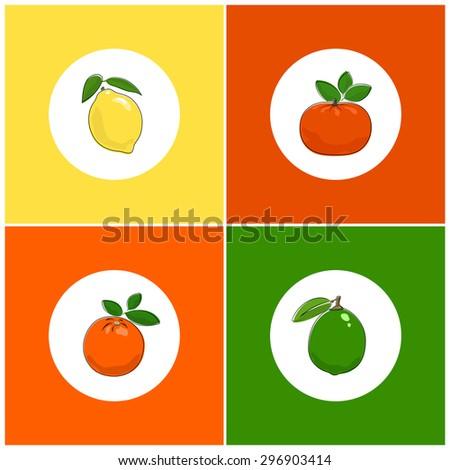 Fruit Icons, Citrus Icon, Round White Fruit Icons on Colorful Background, Lemon Icon, Lime Icon , Orange Icon, Mandarin Icon, Vector Illustration - stock vector