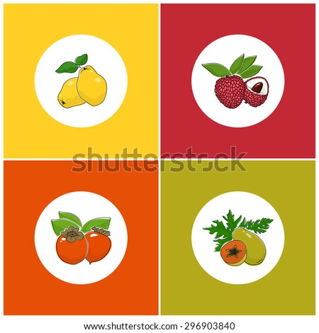 Fruit Icons, Round White Berry Icons on Colorful Background, Papaya and  Lychee  , Persimmon and Quince , Vector Illustration