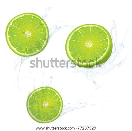 fruit in the water splash - stock vector