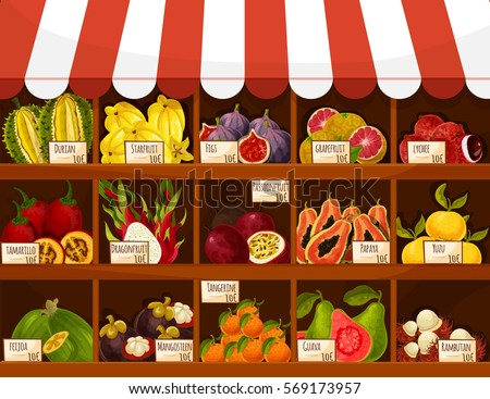 Fruit market stand. Exotic fruits carambola, figs, grapefruit and lychee, tamarillo and durian, dragonfruit and passionfruit. Vector papaya, yuzu and feijoa, mangosteen, tangerine, guava and rambutan