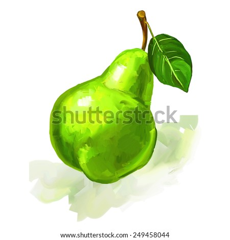 fruit pear  Vector illustration  hand drawn  painted watercolor  - stock vector