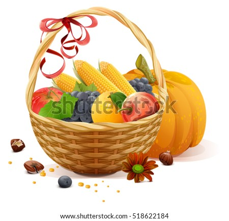 Fruits and vegetables in wicker basket. Rich harvest for Thanksgiving day. Isolated on white vector illustration