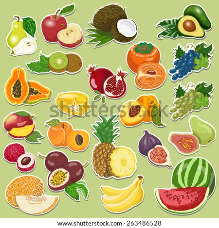 Fruits collection on tags. Vector illustration for your design