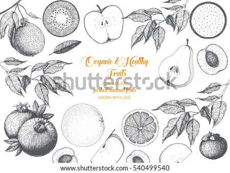 Fruits top view frame with mangosteen, bergamot, passionfruit, pomegranate, apple, peach, kiwi. Farmers market menu design. Healthy food poster. Vintage hand drawn sketch, vector illustration.