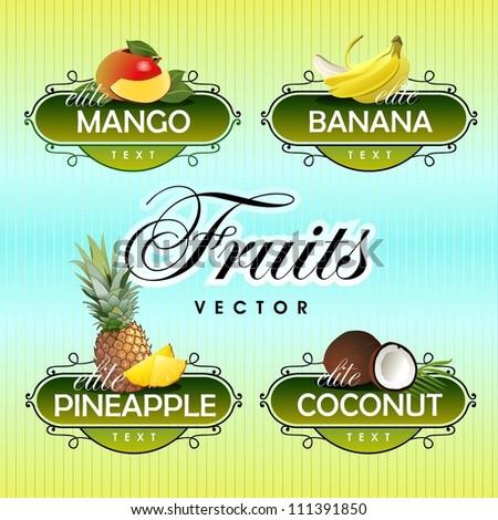 Fruits. Vector. Mango, banana, pineapple, coconut - stock vector