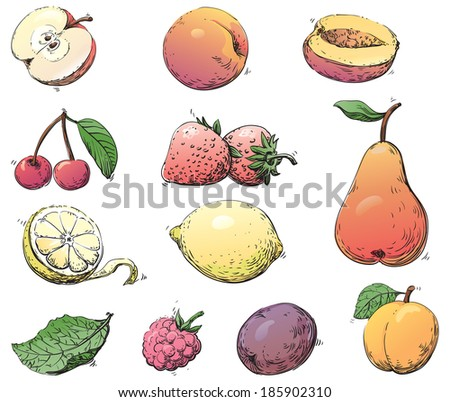 Fruits. Vector set of fruits at color engraving style - stock vector