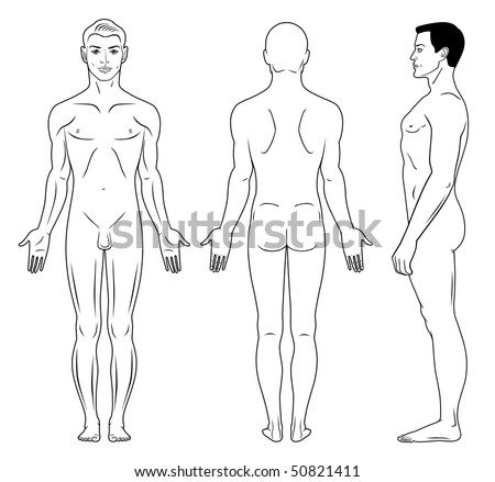 Full length profile, front, back view of a standing naked man - stock vector