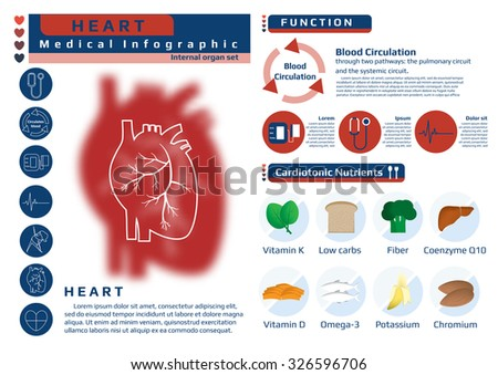 Function Nutrition Supplement Heart Medical Health Stock Vector