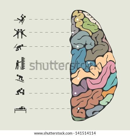 Funny concept of human brain. Vector illustration - stock vector