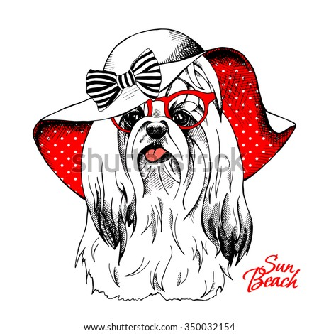 Funny dog York in a red Summer sun hat with bow and in glasses. Vector illustration. - stock vector