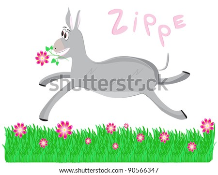funny donkey in the meadow