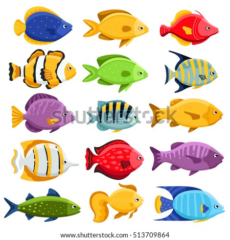 Fish Stock Images Royalty Free Images amp Vectors Shutterstock